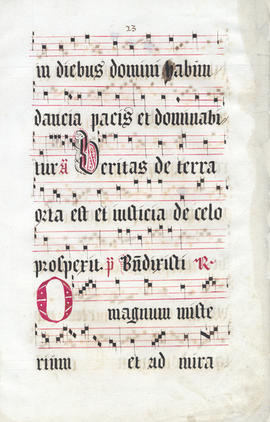 Leaf from a Breviary, Fragment