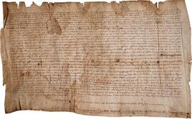 Spanish Notarial Document, Verso